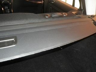 車のカビ画像 (4).JPG